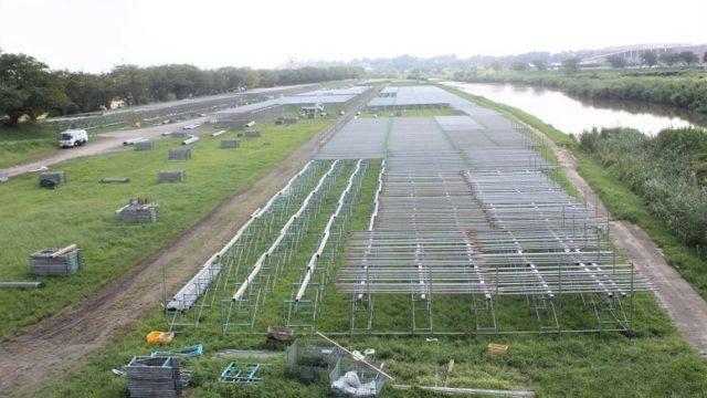 茨城県桜川氾濫で土浦花火大会2019開催は?台風19号被害にツイッターの声