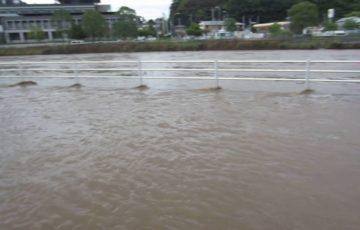千葉佐倉市高崎川で氾濫!最新情報ツイッターの声